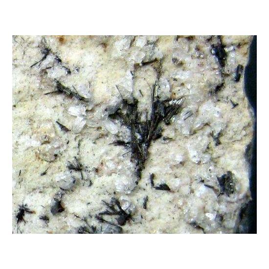 Vonsenite & Tridymite