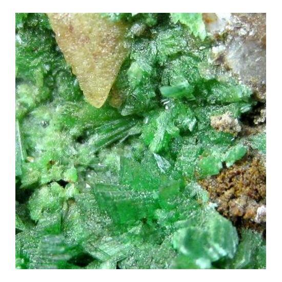 Annabergite With Native Arsenic