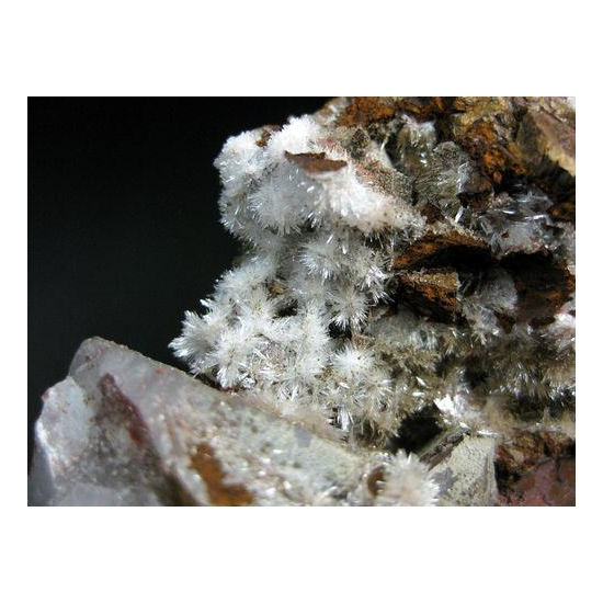 Aragonite & Dolomite On Quartz