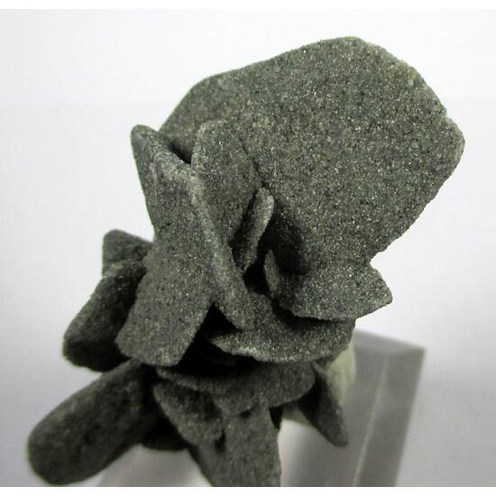 Gypsum Var Desert Rose