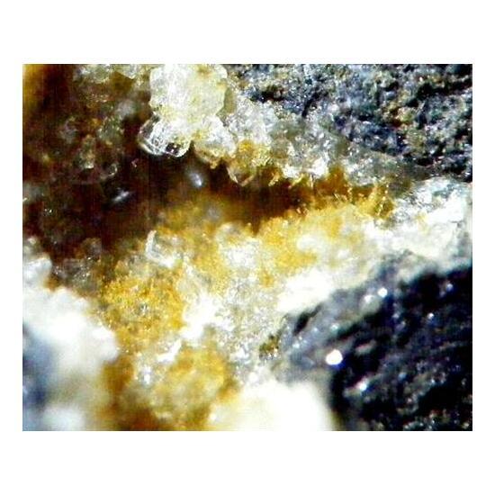 Clinoptilolite-Ca & Erionite-K