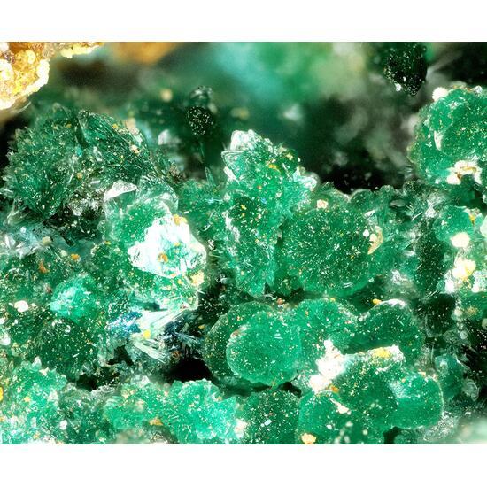 Brochantite & Linarite