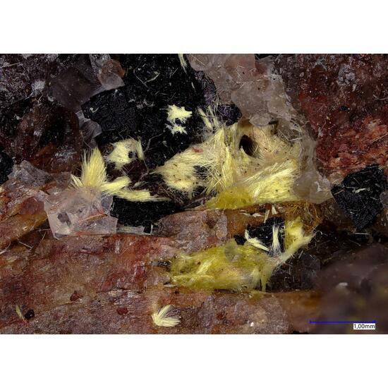 Studtite & Uranophane
