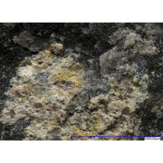 Mcalpineite