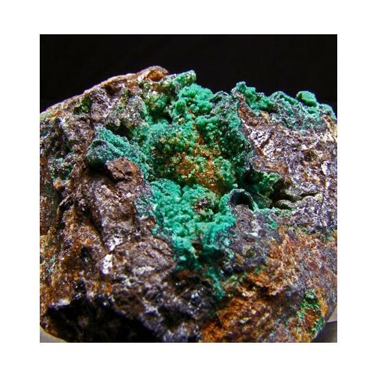 Austinite & Conichalcite