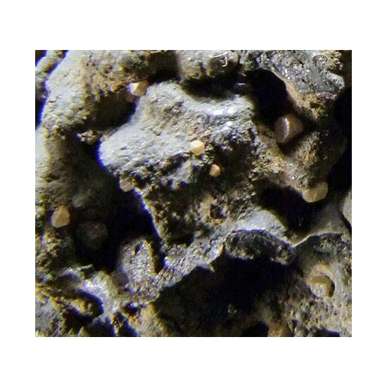 Bromian Chlorargyrite & Iodargyrite On Coronadite