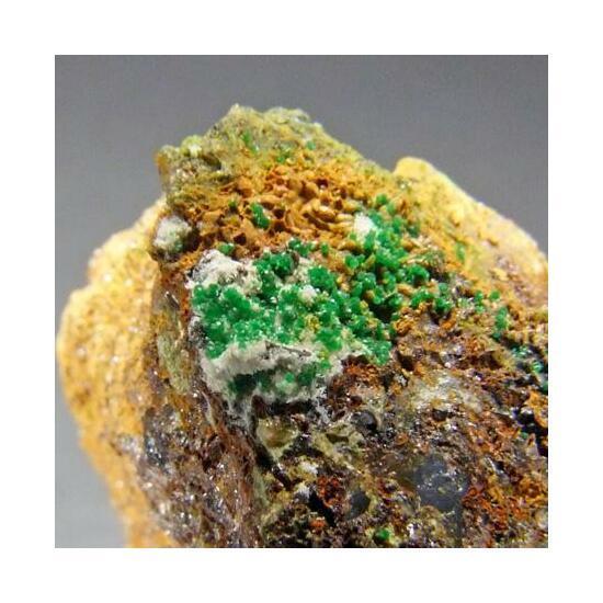 Kleemanite & Bayldonite