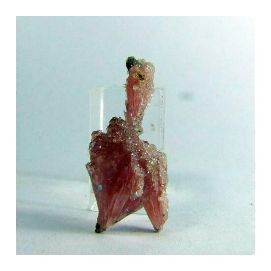 Fluorapophyllite & Hubeite On Inesite