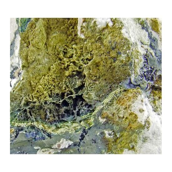 Natrodufrénite Xanthoxenite & Ushkovite