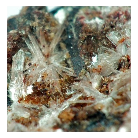 Metaswitzerite