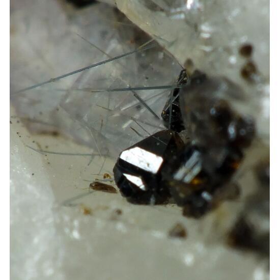 Cassiterite & Fluorite