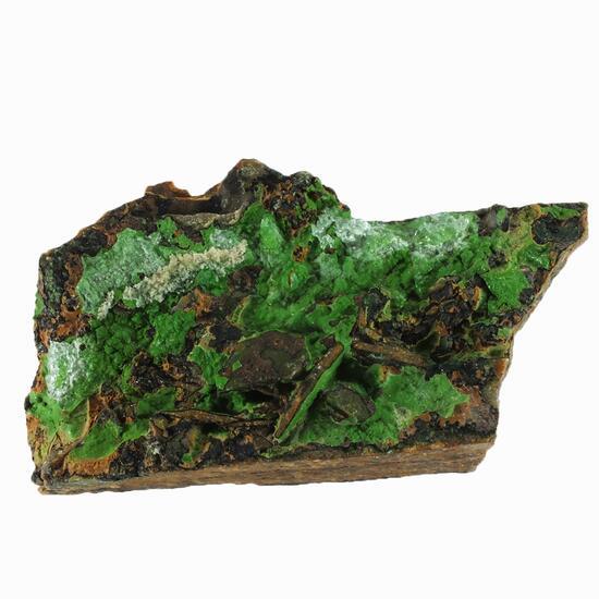 Opal-AN On Conichalcite