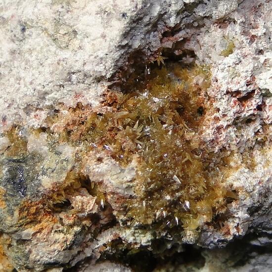 Powellite & Molybdenite