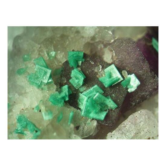 Metatorbernite