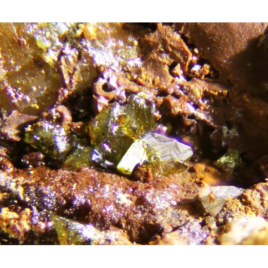 Sonoraite & Mackayite