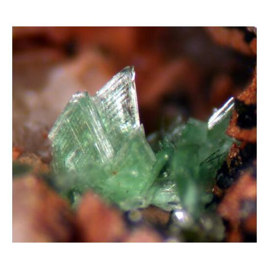 Annabergite Talmessite & Cobaltaustinite