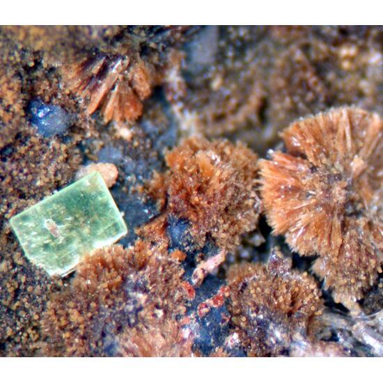Jequitinhonha Selection (12 Specimens)