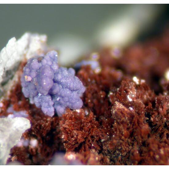 Bermanite & Phosphosiderite