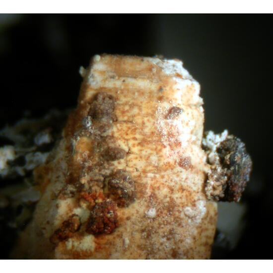 Epididymite Ilmenite & Parisite-(Ce)