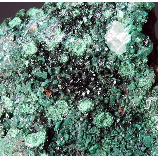 Malachite & Pseudomalachite