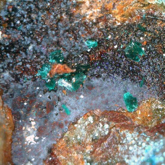 Brochantite & Carbonatecyanotrichite
