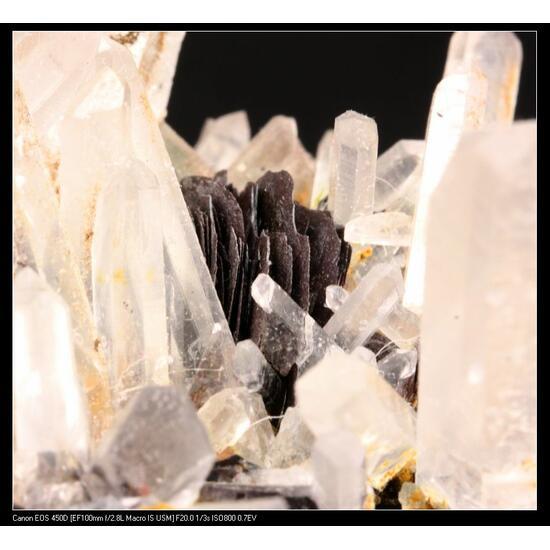 Quartz With Hematite
