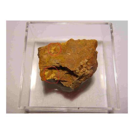 Compreignacite & Gypsum