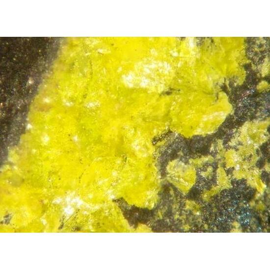 Uraninite & Becquerelite