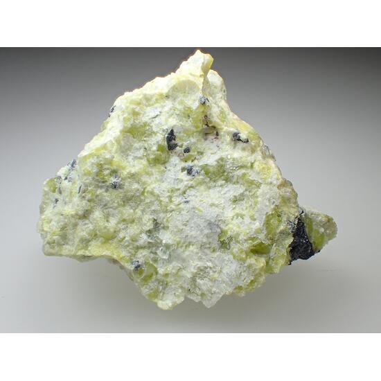 Lizardite & Hydrotalcite