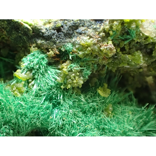 Wulfenite & Mottramite & Malachite
