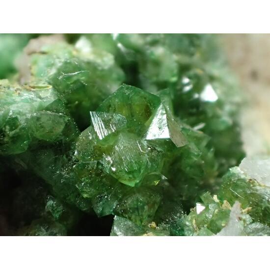 Cuprian Adamite Ferrilotharmeyerite & Tsumcorite