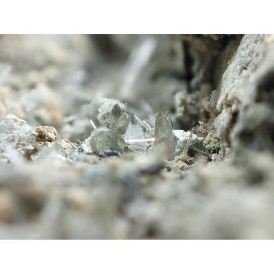 Parascholzite Phosphophyllite & Whitmoreite