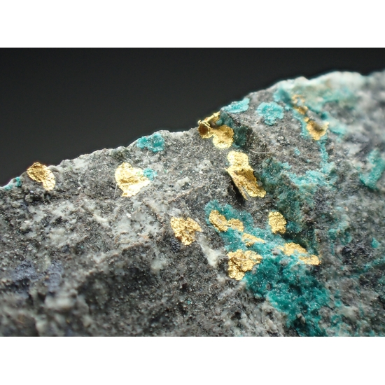 Gold & Atacamite