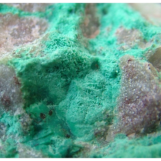 Chrysocolla Psm Mordenite With Duftite