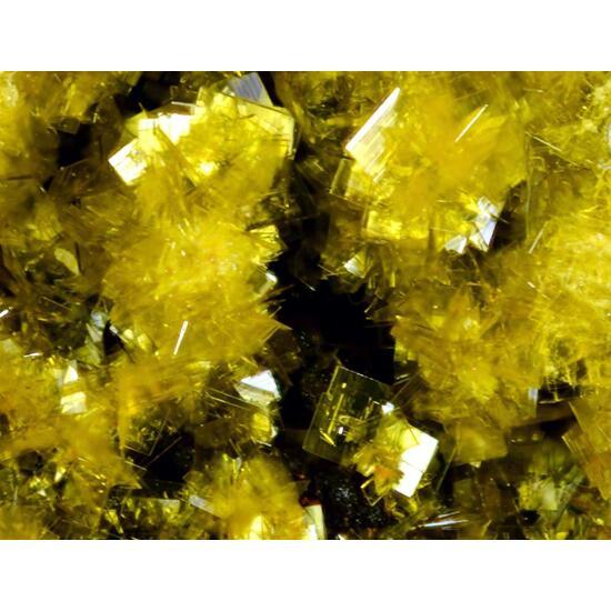 Phosphuranylite & Uranophane-β