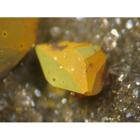 Greenockite On Sphalerite