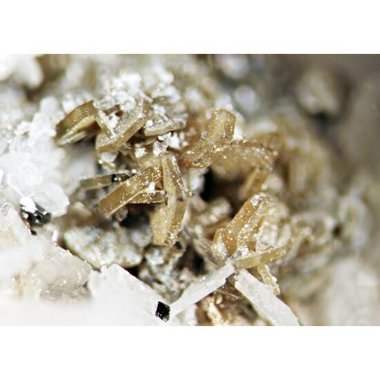 Synchysite-(Ce) Rutile & Albite