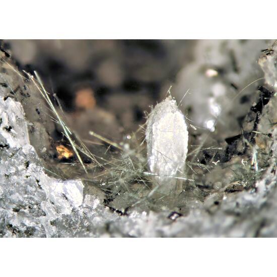Sazhinite-(Ce) Villiaumite & Tuperssuatsiaite