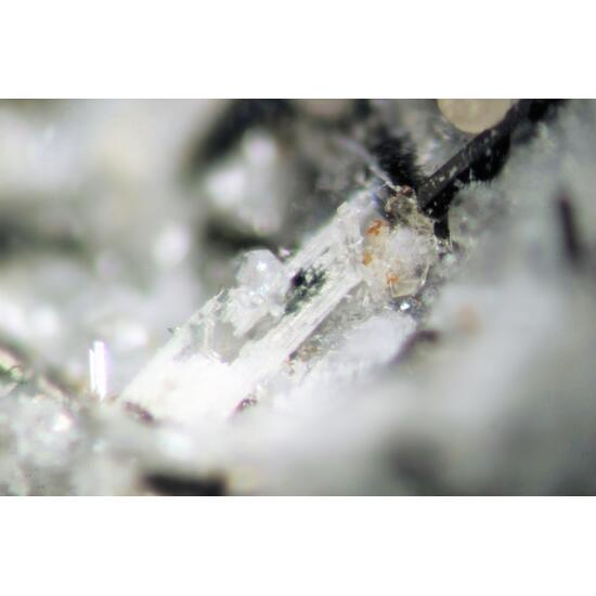 Ferroceladonite & Sazhinite