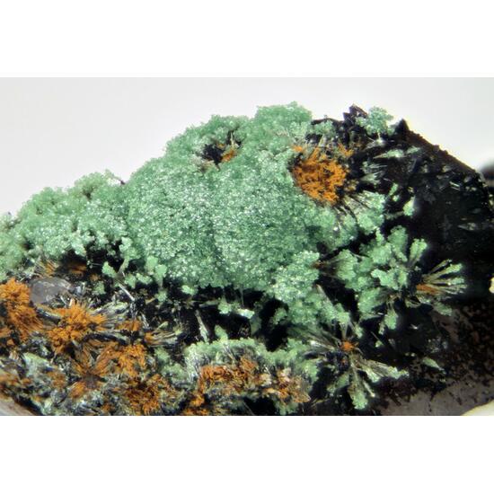 Lipscombite Chalcosiderite & Kidwellite