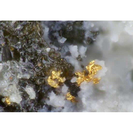 Native Gold Perroudite & Capgaronnite