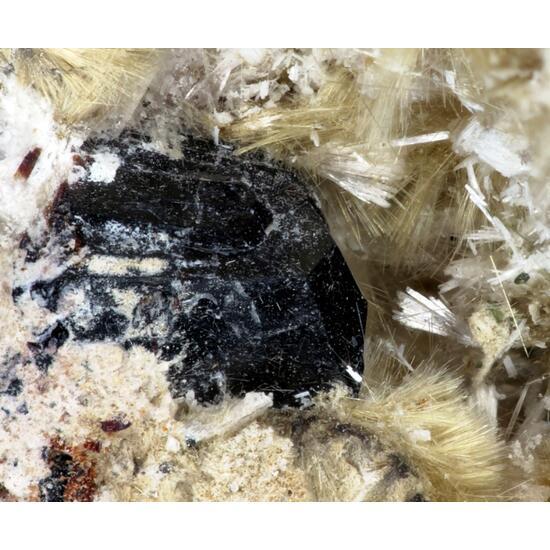 Raite Manganoneptunite & Zorite