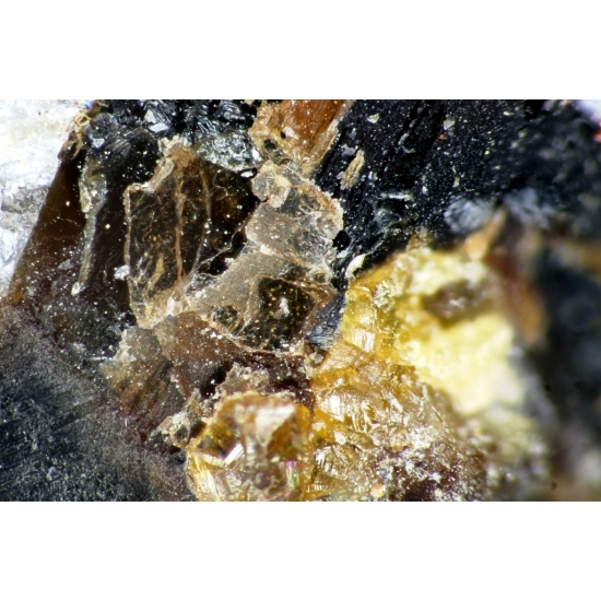 Ganophyllite