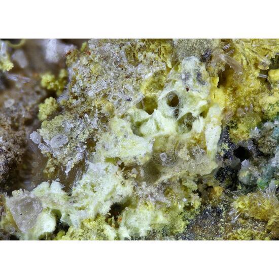 Alwilkinsite-(Y) Johannite & Zippeite