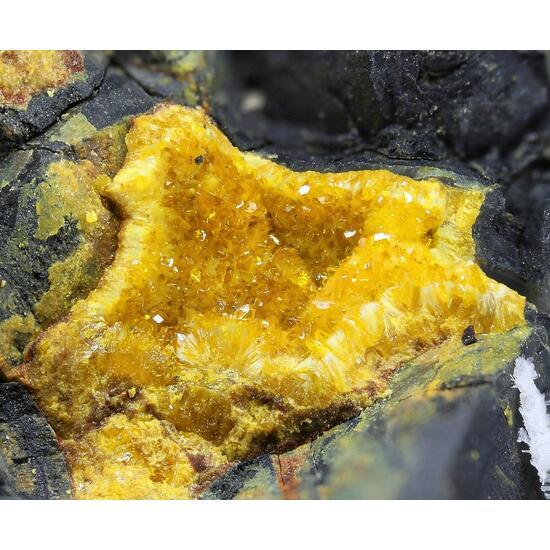 Billietite Uranophane & Uraninite