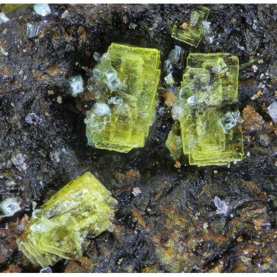 Bassetite Chernikovite & Torbernite