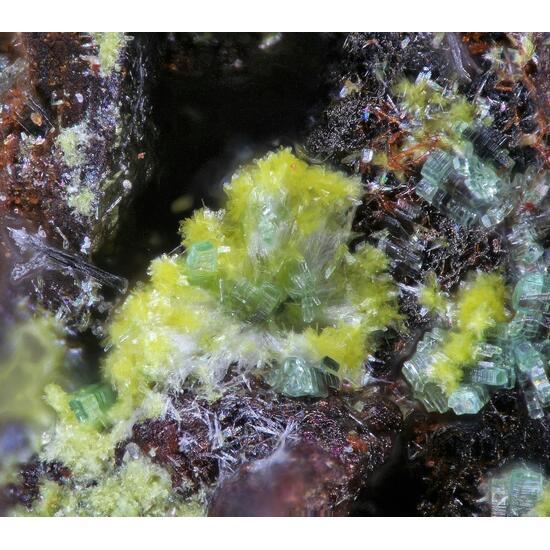 Metavanmeersscheite Churchite-(Y) & Metatorbernite