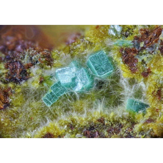 Metasaléeite Studtite & Metatorbernite