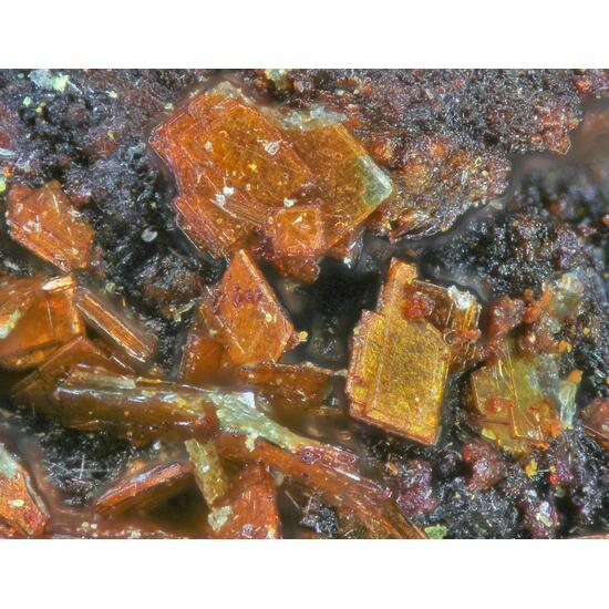 Bassetite Metavanmeersscheite & Metastudtite