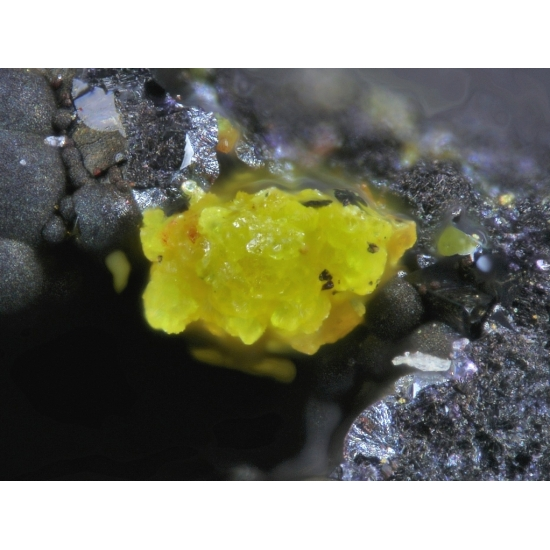 Carnotite